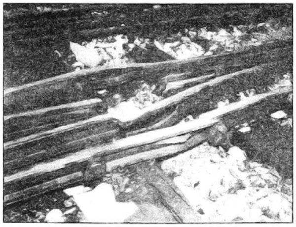 Photo Caption: Switches and frogs systematically blasted by Germans.