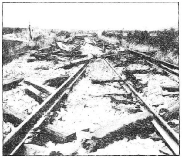 Photo Caption: Destruction on the right of way.